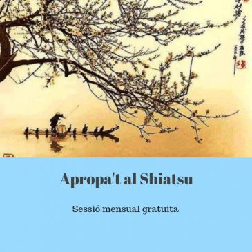 Tarda de Shiatsu